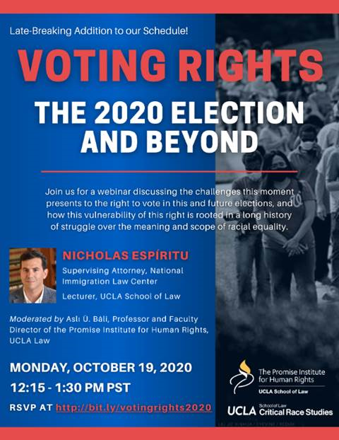 Poster from Voting Rights: the 2020 Election and Beyond