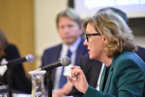 UCLA Law Professor Ann Carlson